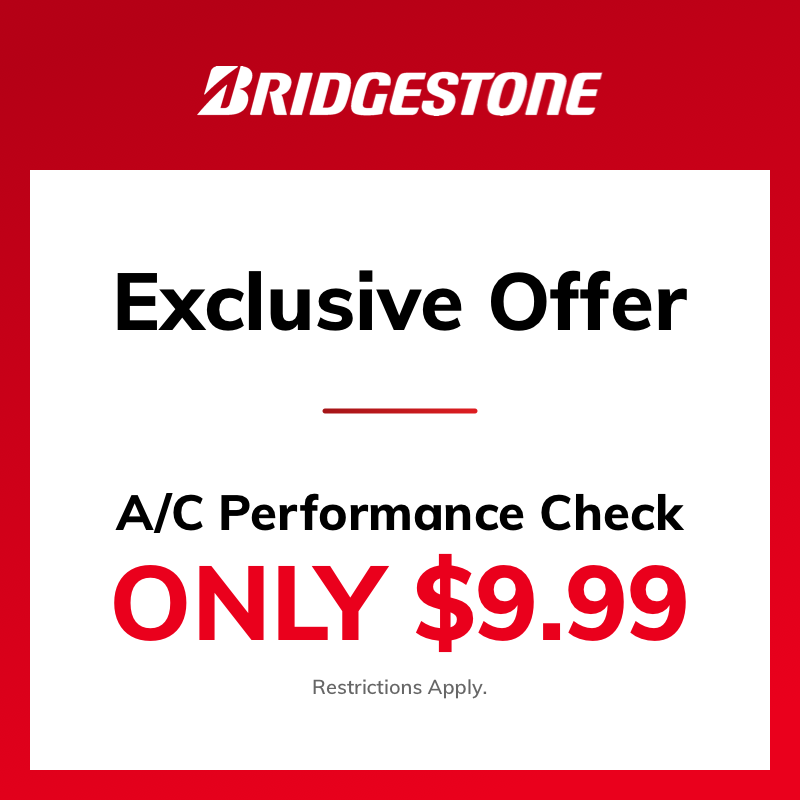 A/C Performance Check ONLY $9.99